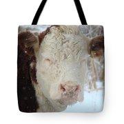 Sleepy Winter Cow Tote Bag