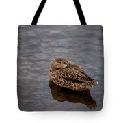 Sleepy Duck Tote Bag