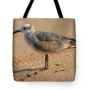 Sleepy Gull Tote Bag