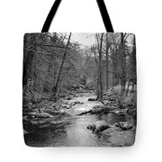 Sleepy Hollow Cemetary Tote Bag