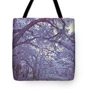 Sleepy Hollow's Muse Tote Bag
