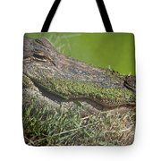 Sleepy Papa Gator Tote Bag
