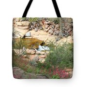 Slide Rock With Pink Wildflowers Tote Bag
