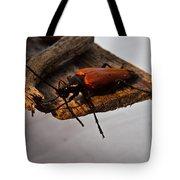 Sliding Beetle Tote Bag