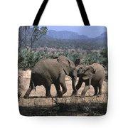 Slight Disagreement Tote Bag