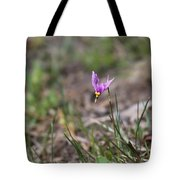 Slimpod Shooting Star Tote Bag