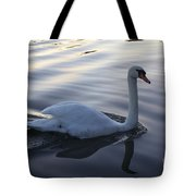 Sliting The Dream Tote Bag