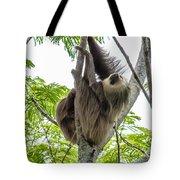 Sloth1 Tote Bag