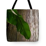 Slow Motion Tropical Waterfall Tote Bag