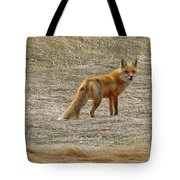 Sly Fox 5785 Tote Bag
