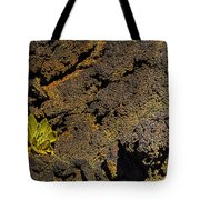 Small Aloe In Lava Flow Tote Bag