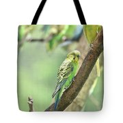 Small Budgie Birds With Beautiful Colored Feathers Tote Bag