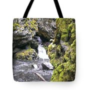 Small Falls At Boulder Cave Tote Bag