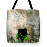 Small Ferns Tote Bag