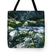 Small Freshwater Spring Under Rocks Tote Bag