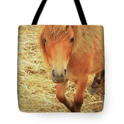 Small Horse Large Beauty Tote Bag