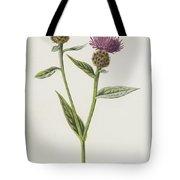 Small Knapweed  Tote Bag
