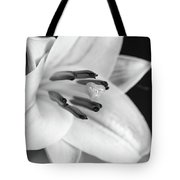 Small Lily-2 Bw Tote Bag