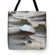 Small Monuments Tote Bag