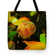 Small Mushroom In Autumn Tote Bag