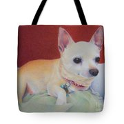 Small Package Tote Bag