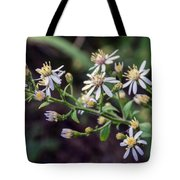 Small Town Blues 2 Tote Bag