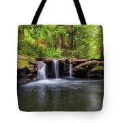 Small Waterfall At Rock Creek Tote Bag