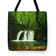 Small Waterfall In Forest Tote Bag