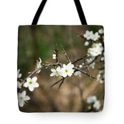Small White Flowers Of Thorns Tote Bag
