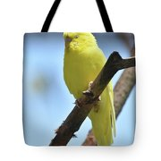 Small Yellow Budgie Parakeet In The Wild Tote Bag