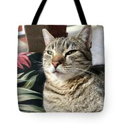 Smartycat Tote Bag