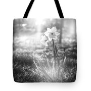 Smell Of The March Tote Bag