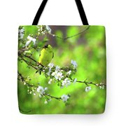 Smelling The Cherry Blossom Male  American Goldfinch Tote Bag