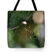 Smiley Spider Web  Tote Bag