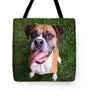 Smiling Boxer Dog Tote Bag