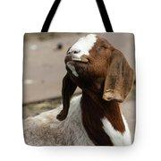 Smiling Goat  Tote Bag
