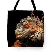 smiling Orange iguana isolated on black  Tote Bag by Sergey Taran