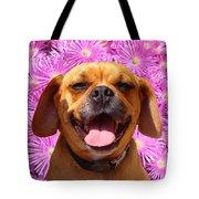 Smiling Pug Tote Bag