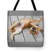 Smiling Puppie Tote Bag