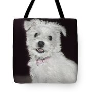 Smiling Puppy Tote Bag
