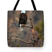 Smith Rock Bald Eagle Tote Bag