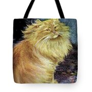 Smoke And Orange Persians Tote Bag
