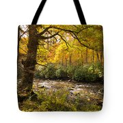 Smoky Autumn Tote Bag