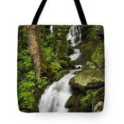 Smoky Mountain Cascade - D002388 Tote Bag