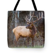 Smoky Mountain Elk II - North Carolina's Cataloochee Valley Wildlife Tote Bag