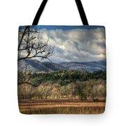Smoky Mountain Splendor Tote Bag