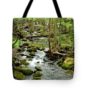 Smoky Mountain Stream 1 Tote Bag