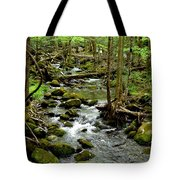 Smoky Mountain Stream 2 Tote Bag