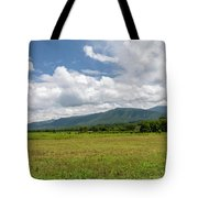 Smoky Mountains Cades Cove 2 Tote Bag