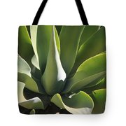 Smooth Agave Tote Bag